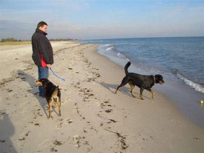 Hundestrände Nrw